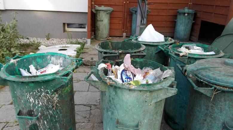 Mieszkańcy Zielonej Góry skarżą się na czystość. Czy toniemy w śmieciach?