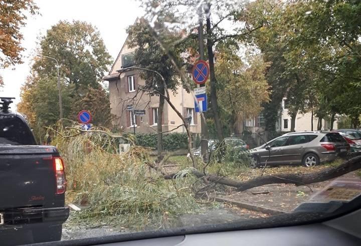 Około południa w Poznaniu pojawił się bardzo silny wiatr, któremu towarzyszą opady deszczu. Wichura powaliła w kilku miejscach drzewa i spowodowała awarie