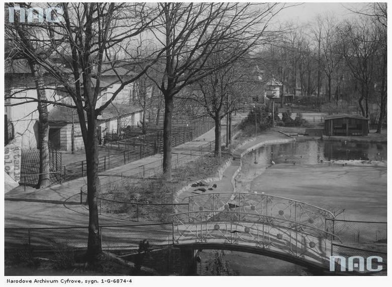 Ogród Zoologiczny - 1931 rok