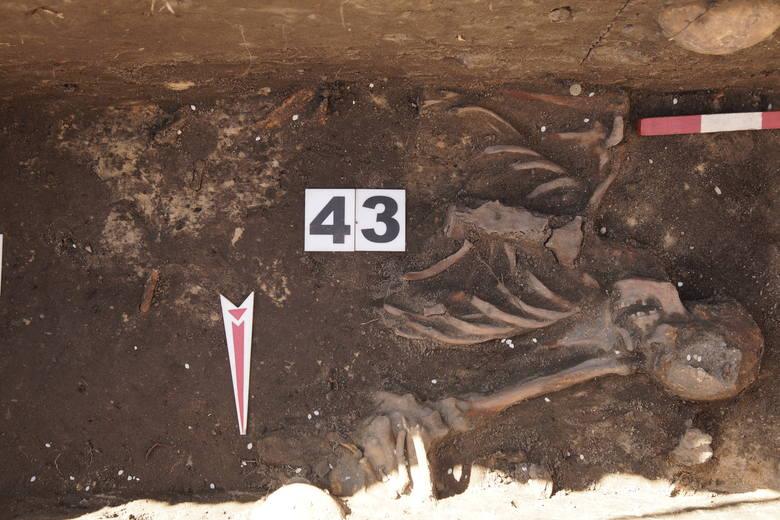 Archeolodzy prowadzili badania przy ulicy Poniatowskiego w Bielsku Podlaskim.