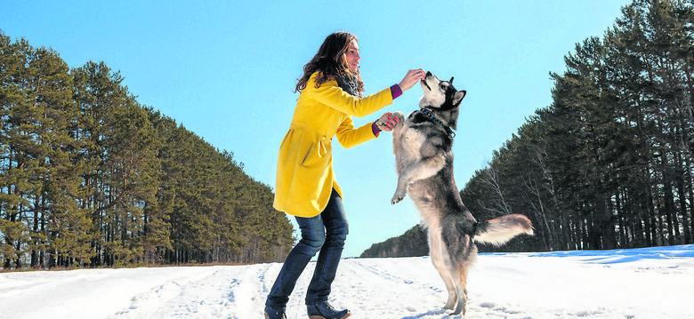 Większość oskarżeń psa o ADHD wynika jedynie z niezrozumienia jego natury. U psów energicznych to, co nazywamy ADHD, jest ekspresją radości biegania