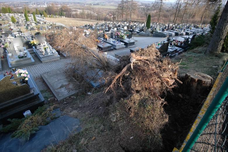 W wyniku wichury, która przeszła nad Przemyślem, na Cmentarzu Głównym przy ul. Słowackiego drzewo przewróciło się na nagrobki. Co najmniej jeden nagrobek