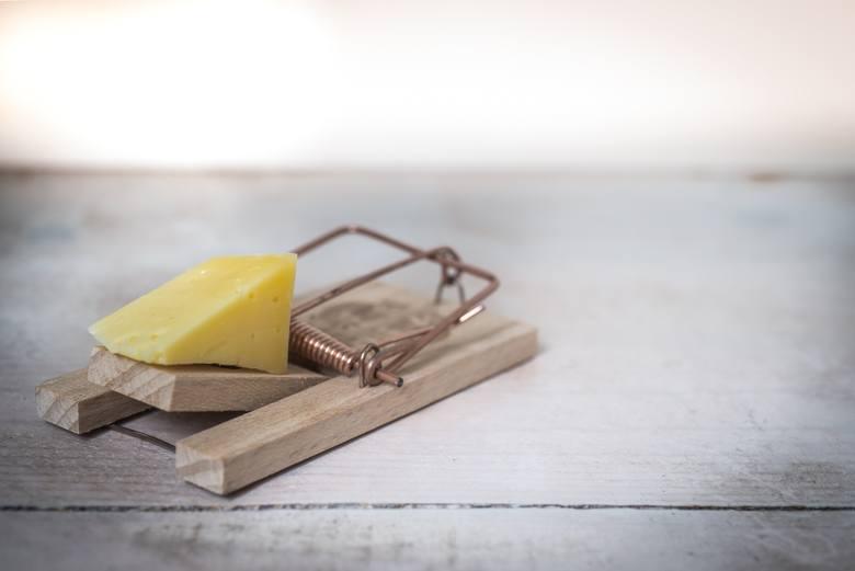 Jedzenie, które zabija. TOP 10 produktów, których nie warto próbowaćJedzenie to dla wielu codzienna przyjemność. W czasie wakacyjnych wyjazdów poznajemy