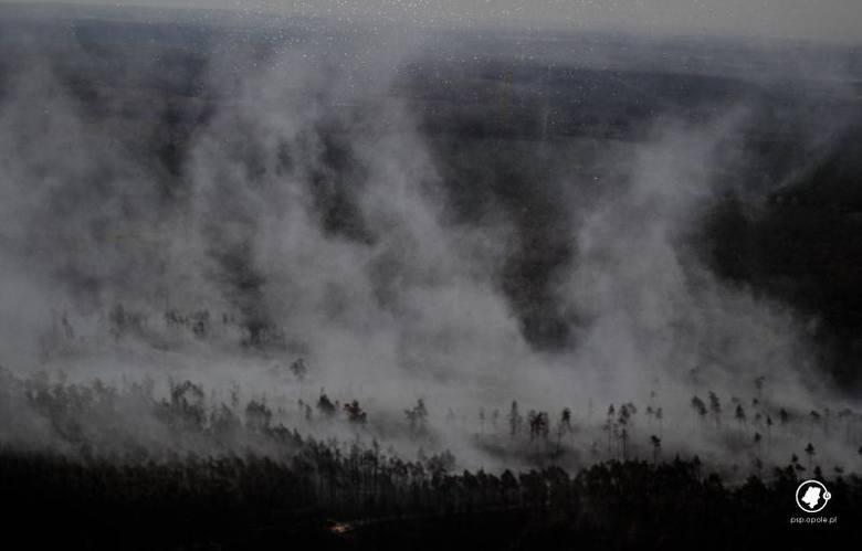 26 lat temu w lasach koło Kuźni Raciborskiej wybuchł największy pożar w powojennej historii Polski. W trakcie pożaru zginęło dwóch strażaków, jedna osoba