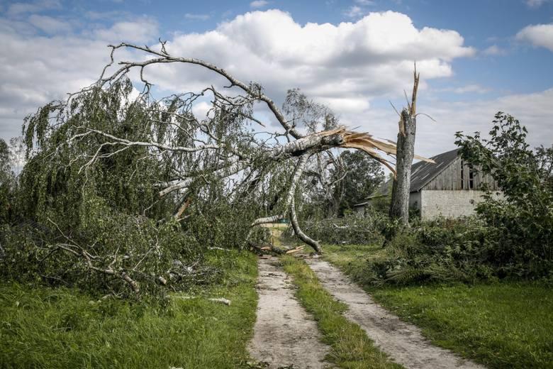 Ostatni dzwonek! Pomoc dla poszkodowanych przez huragan, deszcz i grad w 2017 roku [stawki]