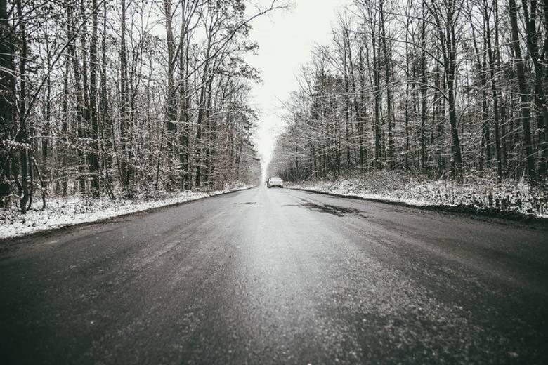 Pogoda na luty 2020: Zima bez śnieguCo mówi długoterminowa prognoza pogody na luty? >>>>