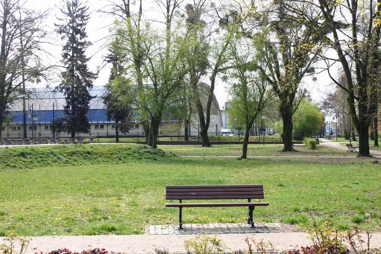 Spacerowicze wrócili do koluszkowskiego parku miejskiego [ZDJĘCIA]