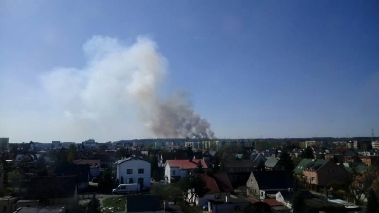 Około godziny 15:00 doszło do dużego pożaru w lesie w okolicach Doliny Śmierci w Fordonie. Do pożaru doszło na tzw. Górkach w okolicach ul. Rataja. Jak