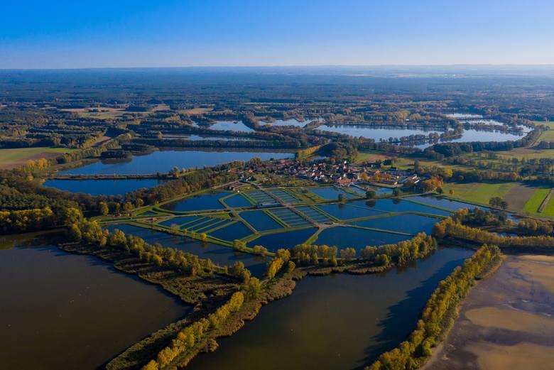 Dolny Śląsk to województwo z największą liczbą zabytków w Polsce, a także różnorodną i bogatą przyrodą. W regionie są góry, piękne jeziora, a także kilkusetletnie