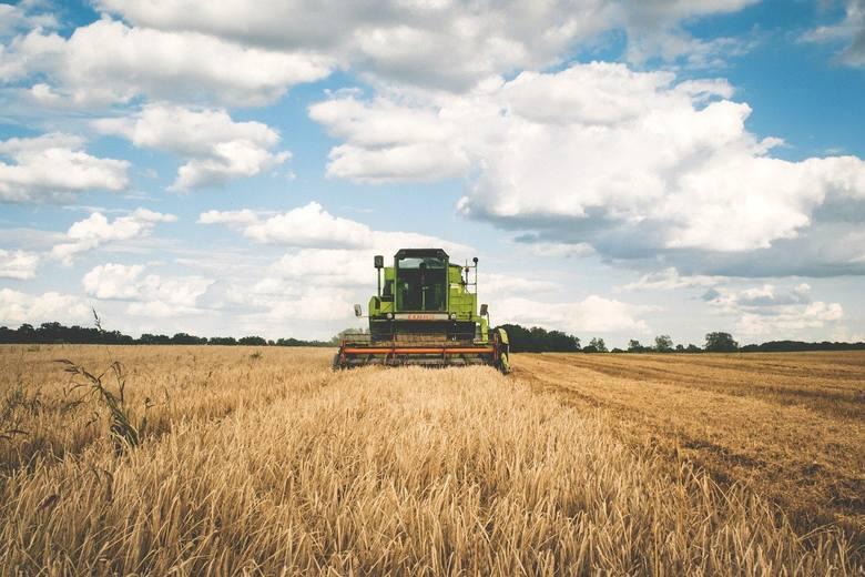 GUS i ARiMR dzielą się najnowszymi danymi o średnich cenach gruntów ornych w Polsce. Ceny zakupu/sprzedaży użytków rolnych w IV kwartale 2020 r. wg województw