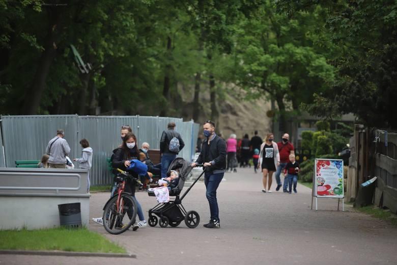 Łodzianie w ten weekend odwiedzają łódzkie zoo i Ogród Botaniczny. ZOBACZ ZDJĘCIA