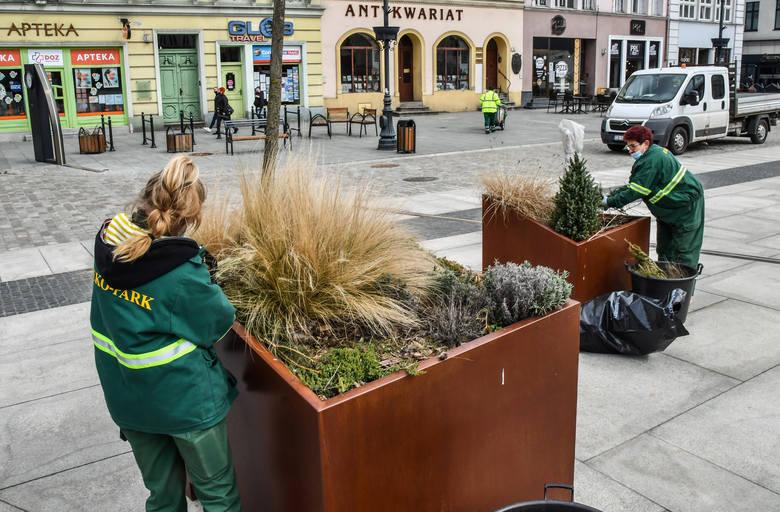 Miesiąc temu na Starym Rynku ożywiono roślinność. Teraz mieszkańcy miasta czekają na powrót do normalnego życia, m.in. na otwarcie restauracji