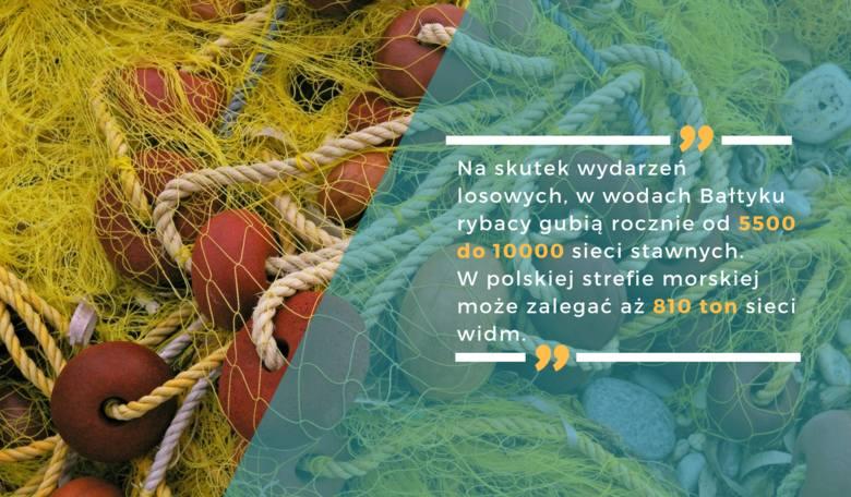 Wyjazd nad morze? Tylko na własne ryzyko! TOP 11 zatrważających faktów o Bałtyku