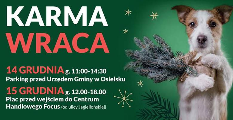 Nasza akcja: Karma wraca. Odbierz świąteczne drzewko w zamian za wsparcie bydgoskiego schroniska