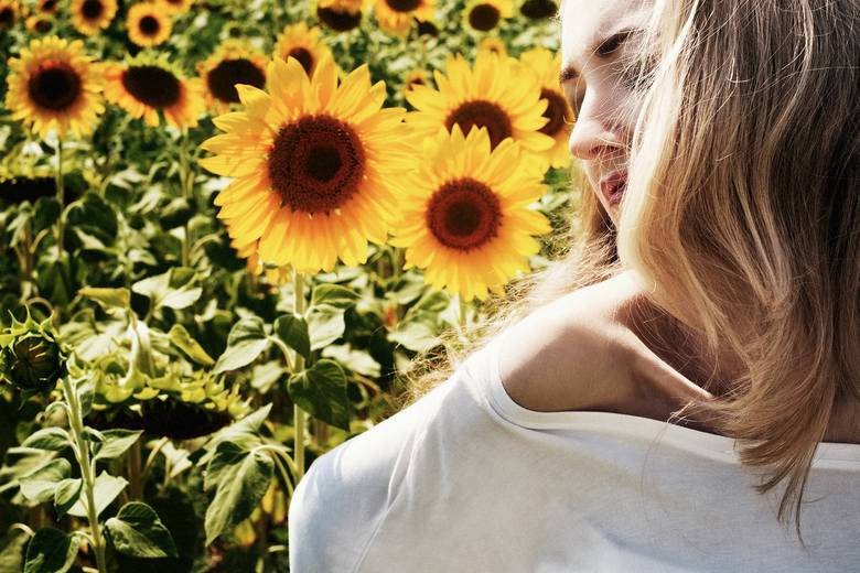 Pola słoneczników to teraz najmodniejsze miejsca w Polsce. Ogromne żółte kwiaty robią niesamowite wrażenie - nic dziwnego, że jak co roku są niezwykle