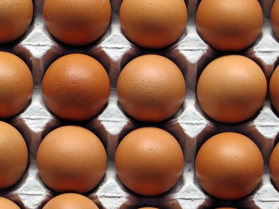 Skażone jajka