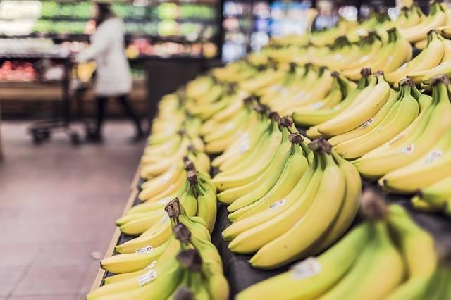 Banany mogą wkrótce zniknąć ze sklepowych półek! Za wszystko odpowiada groźny grzyb atakujący plantacje.