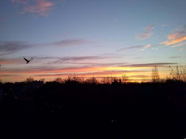 Pogoda w Łodzi i w regionie. Sprawdź prognozę na poniedziałek [WIDEO]