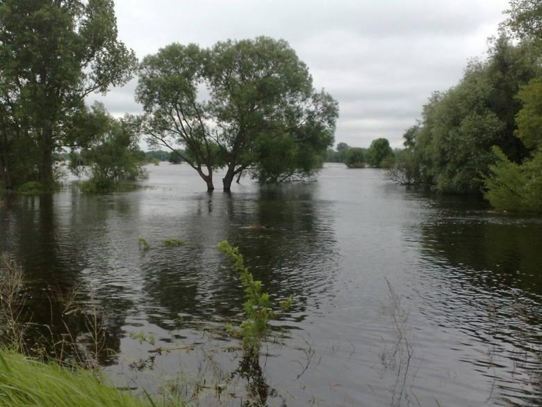 W tym miejscu w Kostrzynie Warta wpada do Odry, ale teraz zamiast dwóch rzek widać jedno wielkie rozlewisko