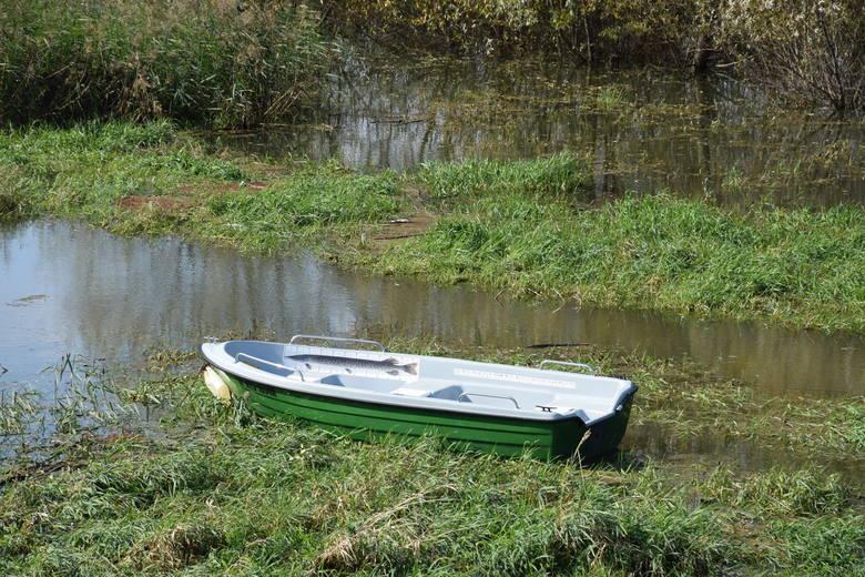 Jest wniosek o strefę ciszy na terenie popularnego jeziora w Malerzowicach. Będzie o to wojna?