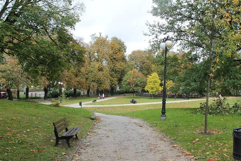 Ul. Szyperska - efekt wprowadzania zieleni na teren Starego Miasta.