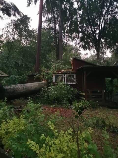 Drzewa zniszczyły domki letniskowe nad jeziorem Dłusko.