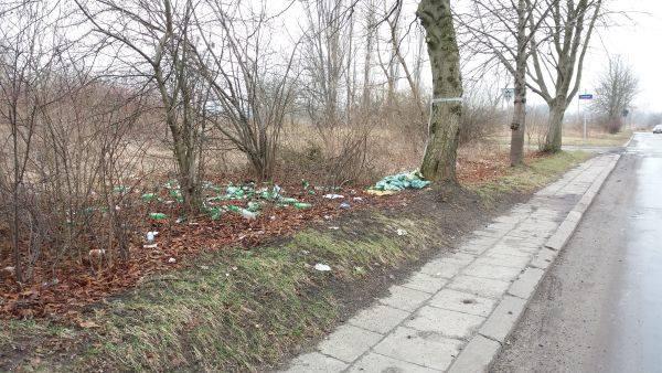 Piasek na poboczu i śmieci na trawniku - taki widok ma zniknąć z miasta.