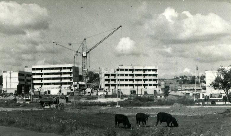 Zobacz Rzeszów sprzed lat na starych fotografiach. Unikalne archiwalne zdjęcia Nowin [GALERIA]