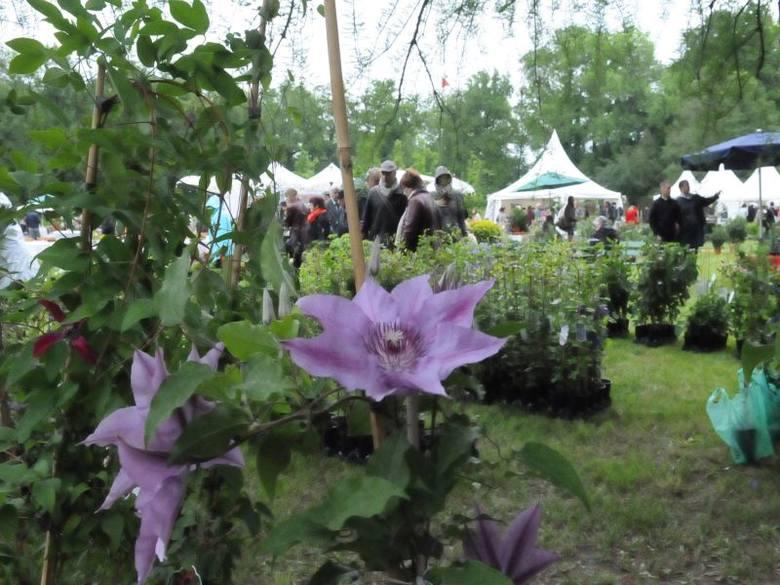 Festiwal Ogrodniczy w Parku i Zamku w Branitz