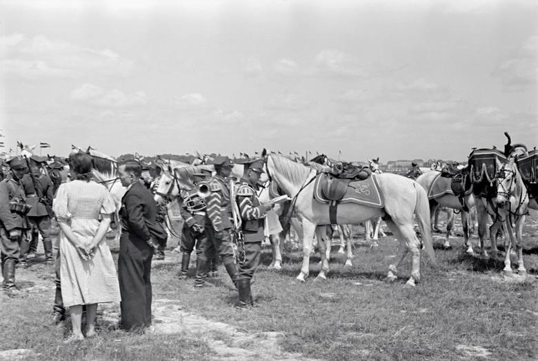 Fotografia z okresu międzywojennego. Pole Mokotowskie. Członkowie orkiestry kawalerii stojący obok koni.