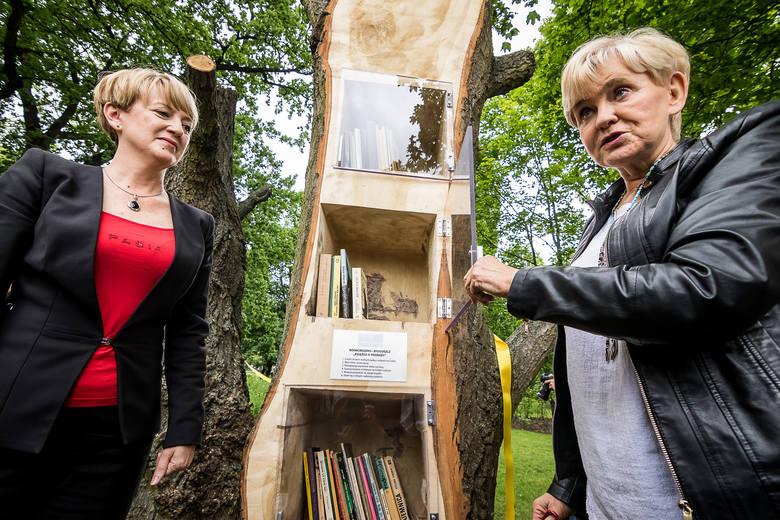 Od wtorku 13 czerwca w parku Kochanowskiego działa pierwsza plenerowa biblioteka w... drzewie. - To spełnienie moich marzeń i dowód na to, że Bydgoszcz