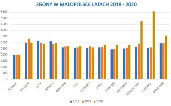 W Małopolsce w 2020 roku liczba zgonów wzrosła o blisko 20 procent. To tak, jakby z mapy województwa zniknęły Sułkowice