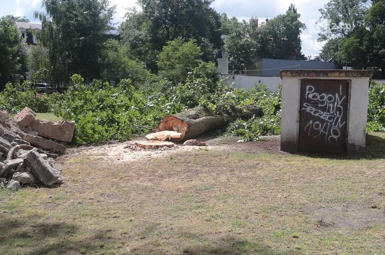 Wycięte drzewa przy ul. Ojca Beyzyma w Szczecinie. Mieszkańcy zaniepokojeni