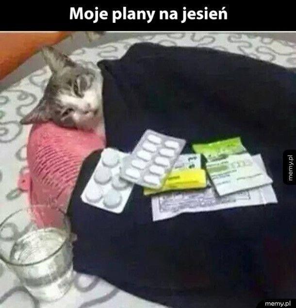 przeziębienie sezon na przeziębienie memy o przeziebięniu memy o chorych facetach jak chorują faceci