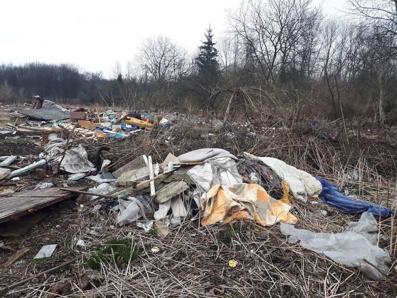 Tak wygląda aktualne rejon wokół Tauron Areny Kraków - od strony alei Jana Pawła II śmieci, a od strony alei Pokoju górują z kolei dźwigi