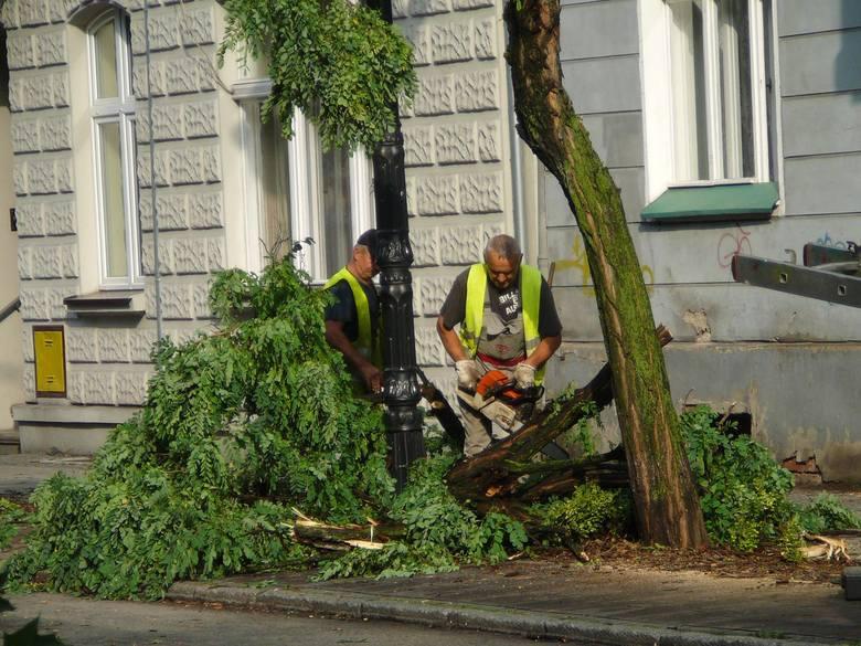 Na wielu ulicach wciąż usuwane są gałęzie. Na terenie ogrodu sztuk Biblioteki Miejskiej, gdzie nawałnica uczyniła najwięcej szkód, pracowali przedstawiciele