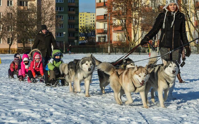 W zabawie na śniegu weźmie udział łącznie 90 dzieci