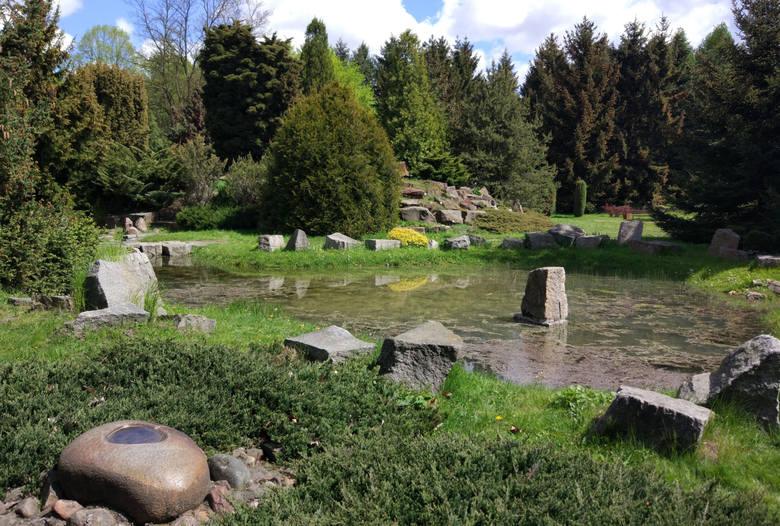 1. W niedzielę, 1 kwietnia, po zimowej przewie otwiera się ogród botaniczny. Na zwiedzających czekają dwie nowości.Pierwszą są mówiące ławki, które opowiadają