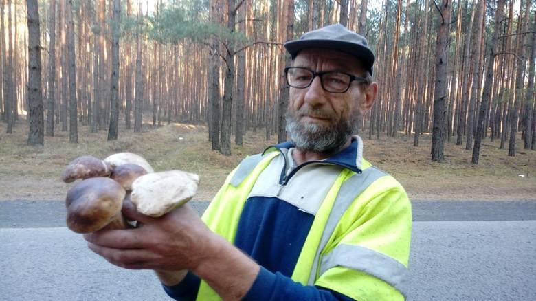 Leszek Jurczak ze Smolna Wielkiego uwielbia zbierać grzyby. W środę (10 października) wybrał się do lasu w okolicach Wojnowa. Znalazł kilkadziesiąt prawdziwków.-