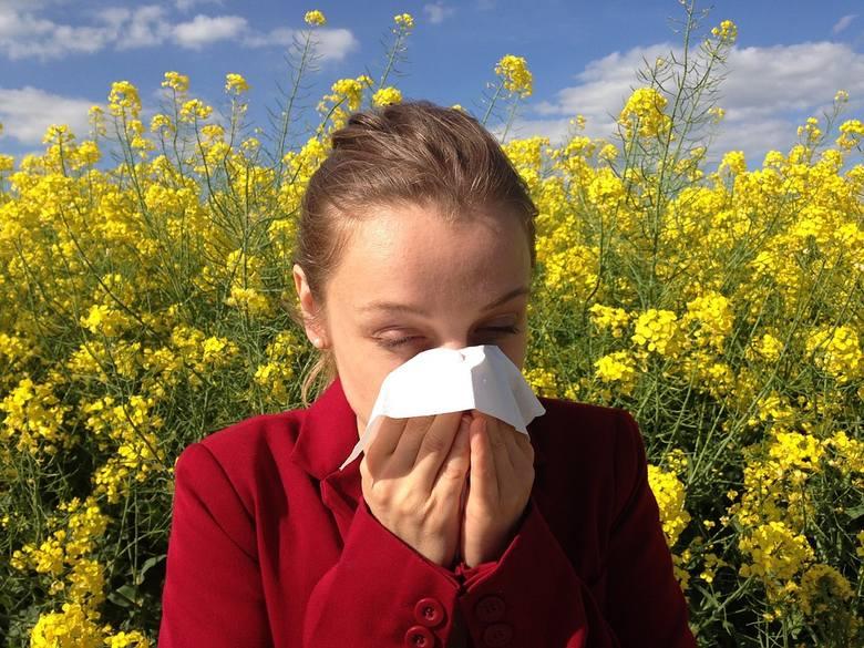 Kalendarz dla alergików. Sprawdź co uczula w którym miesiącu