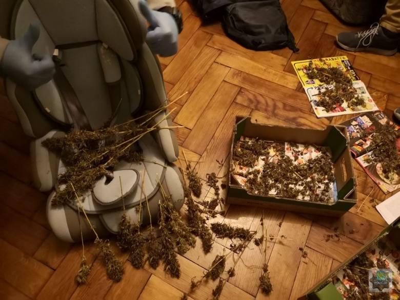 Kryminalni z Opola zatrzymali 35-latka, który miał 600 gramów narkotyków