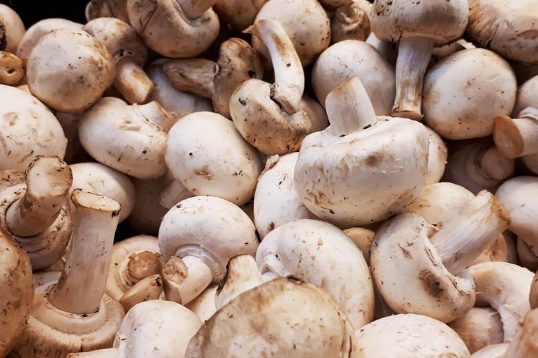 Choć grzyby nie stanowią największej gałęzi naszego eksportu, to z nich jesteśmy znani na całym świecie. Polska to największy w Europie producent pieczarek.