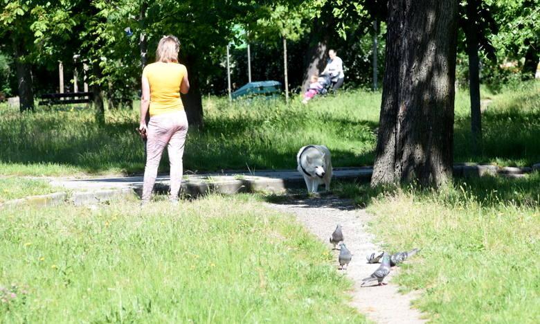 U zbiegu ulic Dąbrowskiego i al. Wojska Polskiego powstanie nowoczesny obiekt