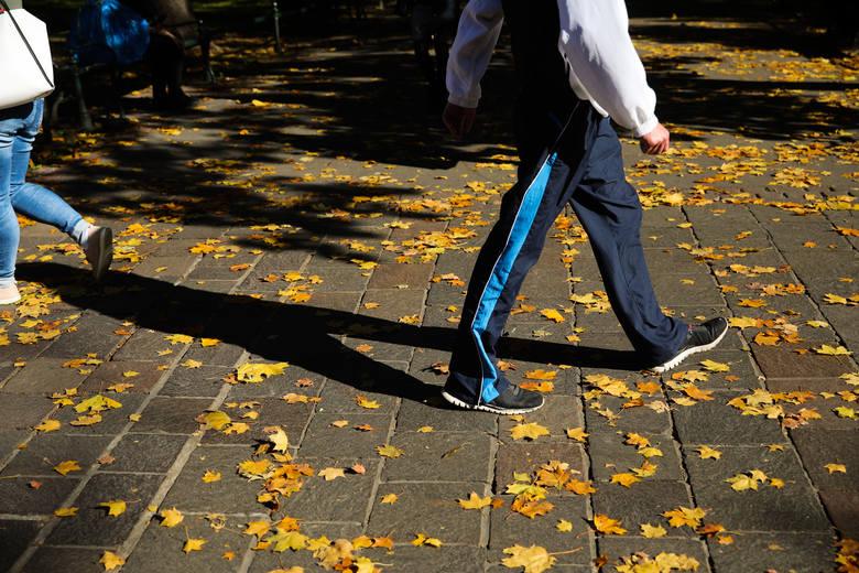 Polska złota jesień zawitała do Krakowa. Jest słonecznie i ciepło [GALERIA]