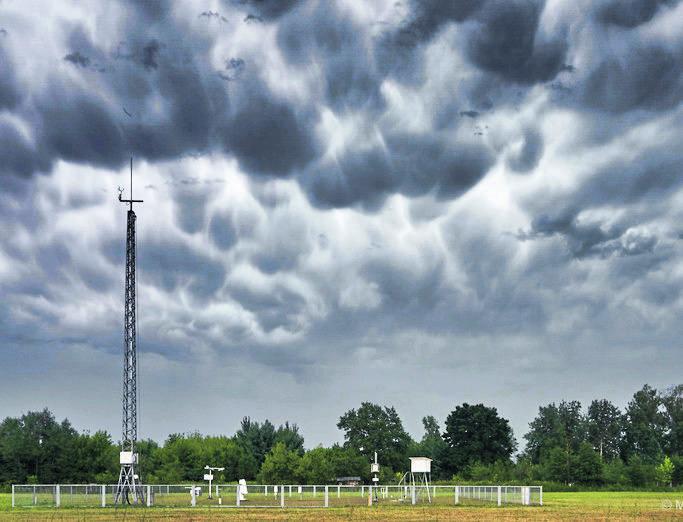 Zjawisko Mamma, czyli wypukłości na dole chmury, swoim wyglądem przypominające wymiona. Pojawia się na rozpadającej się już chmurze burzowej.