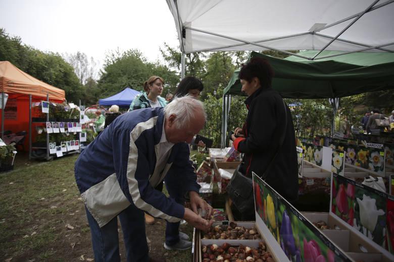 W sobotę i niedzielę na terenie Ośrodka Doradztwa Rolniczego odbyły się Jesienne Targi Ogrodnicze. Na odwiedzających czekała oferta warzyw, owoców, a