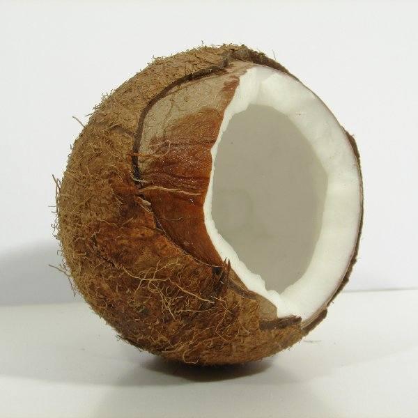 To nie czaszka, to kokos