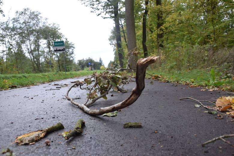 Połamane gałęzie zmorą rowerzystów na ścieżce do Makowa