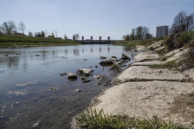 Z dnia na dzień opada poziom wody w Wisłoku. Tak w czwartek wyglądała rzeka w Rzeszowie. Czy czeka nas największa od lat susza?