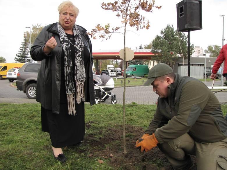 Prezydent Gorzowa Jacek Wójcicki i radna Grażyna Wojciechowska podczas akcji sadzenia drzewek zorganizowanej przez Stal Gorzów